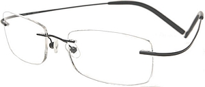TITANIUM These sophisticated eyeglasses by RedStone are
